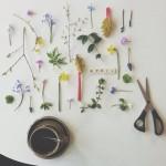 Instagram crush on Tradgardenpahojden