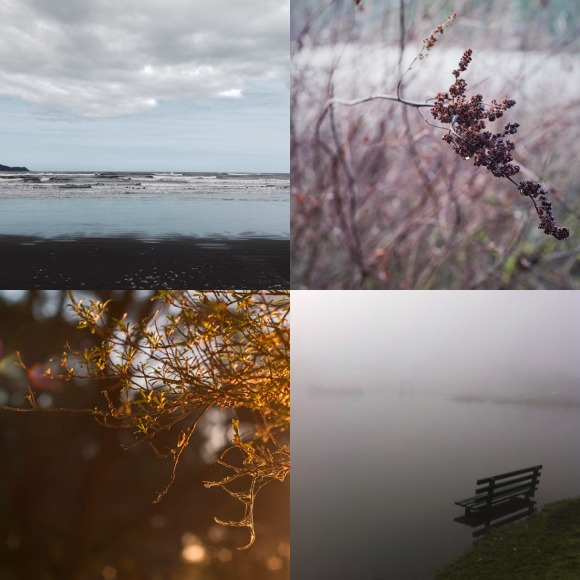 It's a moody Wednesday - Instagram challenge - favorite 4