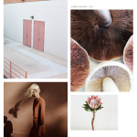 Color Inspiration No.2: Terracotta and Blush