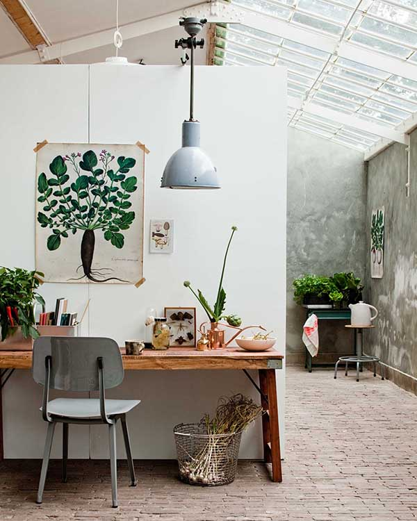 Botanical Trend-Eclectic Trends