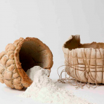 Talia Mukmel's  Terra Cotta Projects