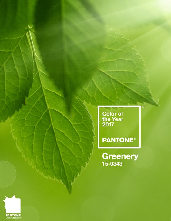 Color of the year 2017-Pantone-Greenery via Eclectic Trends
