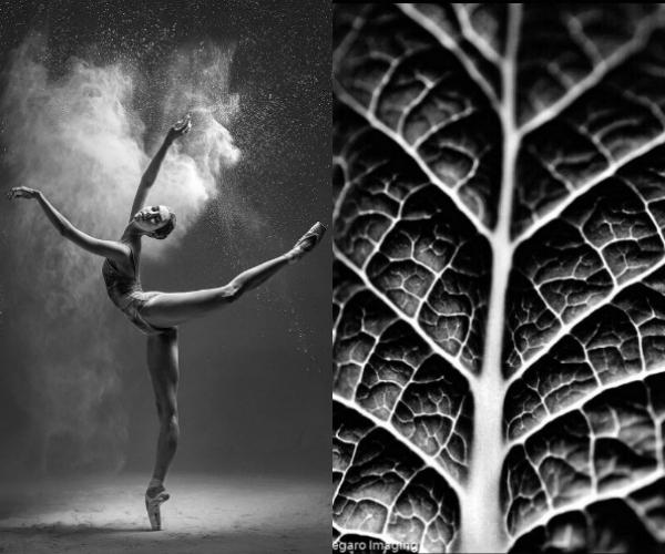 Artistic_Synapses_Flexibility_Miriam_Marti_5_Eclectic Trends