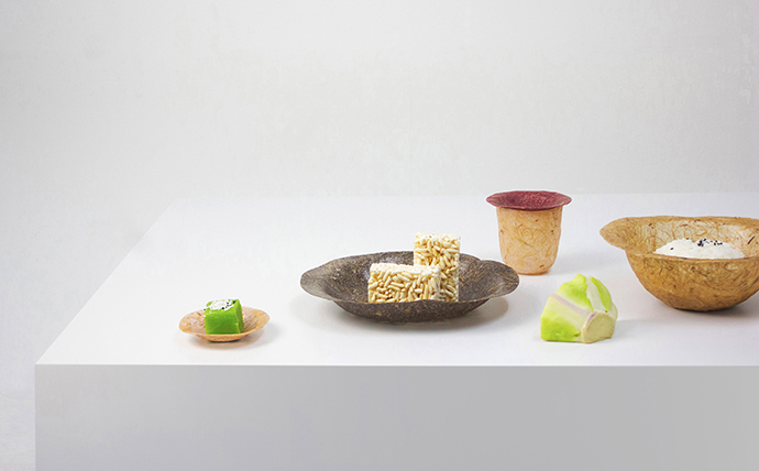Eclectic Trends | Kelapack - A Waste Management Design With Tableware