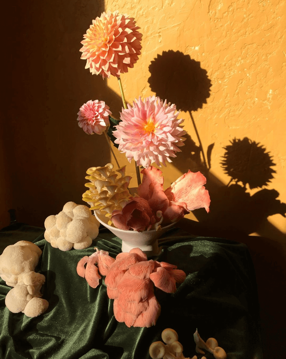 Are fungi the new flowers - Yasmine Floral Design - Eclectic Trends