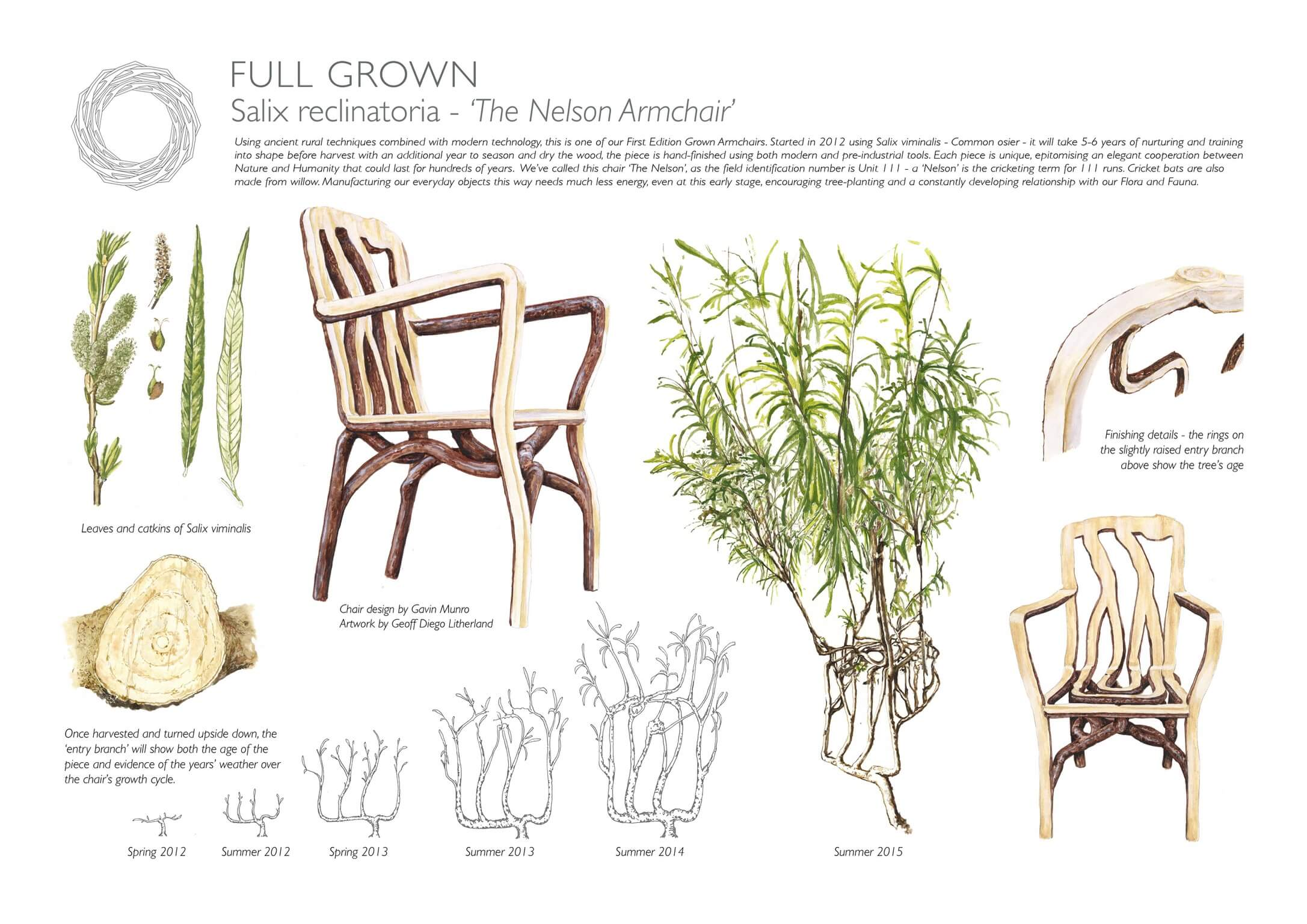 Full Grown | Sustainable Design | Eclectic Trends