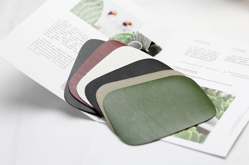 Vegan Leather Made From Cactus