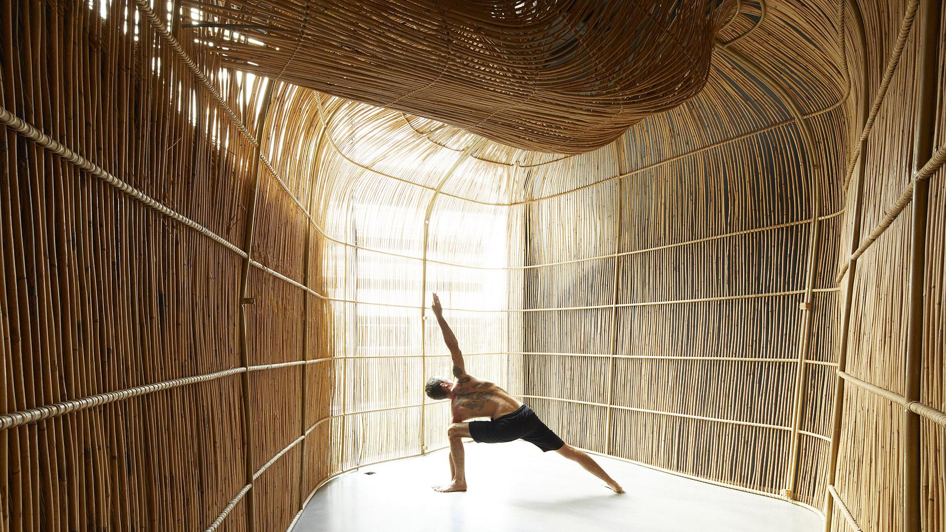 3D modeling shaping yoga pods by enter projects-Eclectic Trends